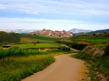 The-Camino-de-Santiago-2
